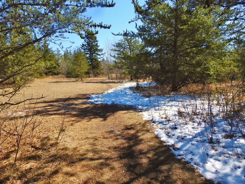 Back to Bird's Hill Provincial Park – part 3