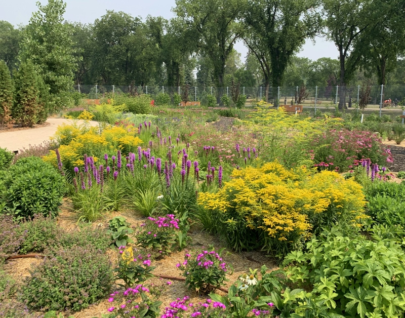 Diversity Gardens at TheLeaf