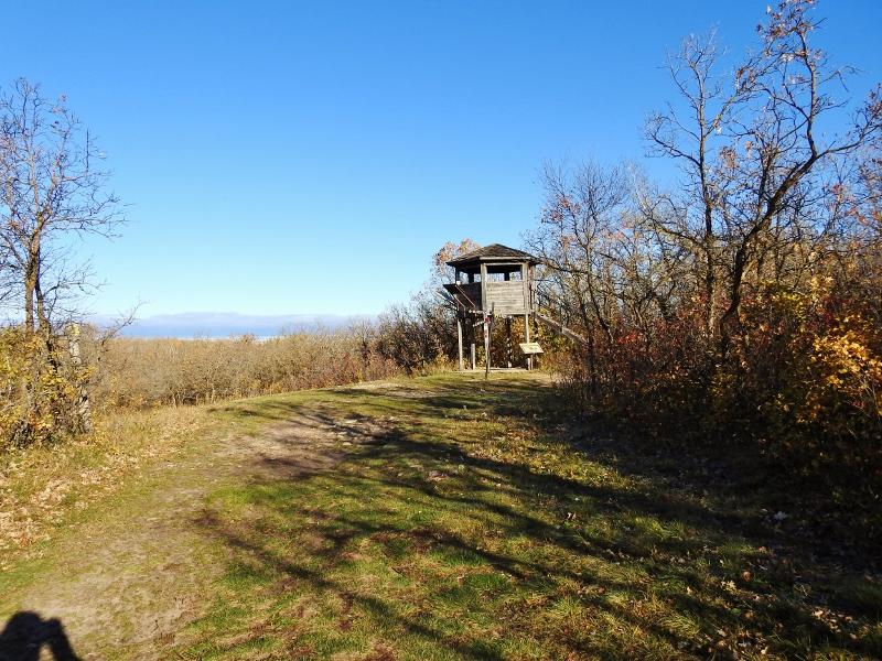 Chickadee Trail at Birds Hill ProvincialPark