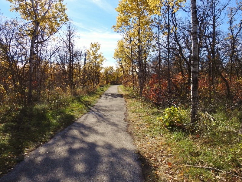 Lakeview Trail and Bur Oak Trail at Birds Hill ProvincialPark